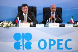 Организация стран — экспортеров нефти (ОПЕК)